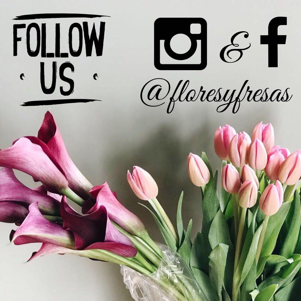 banner-follow-us