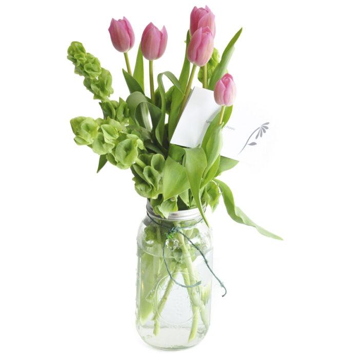 5 Tulipanes