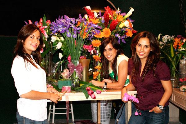 FloresyFresas