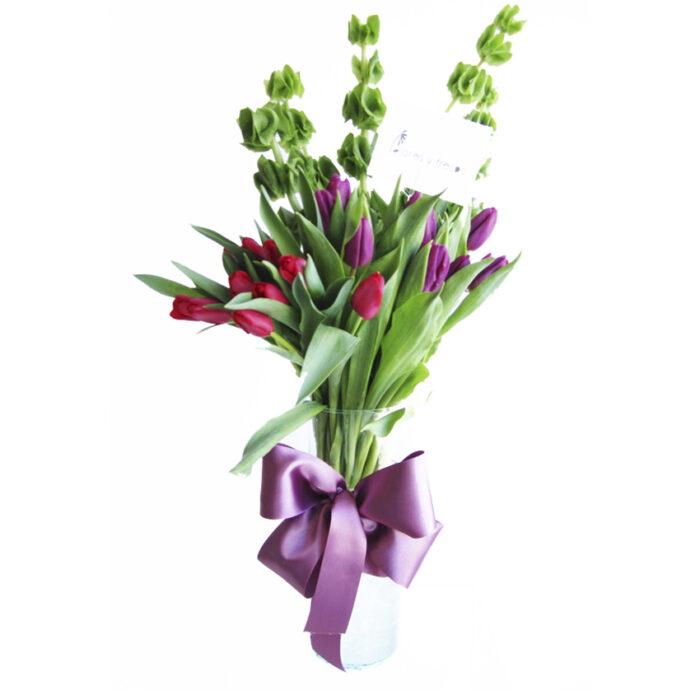 tulipanes rojos y morados